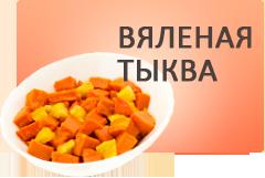 cat_tykva